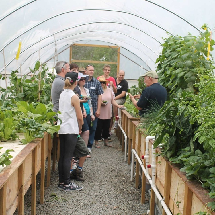 Four-Day Aquaponics MasterClasses 2021