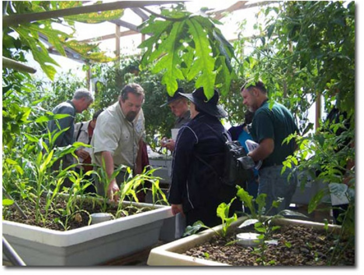 Four-Day Aquaponics MasterClass March 2020