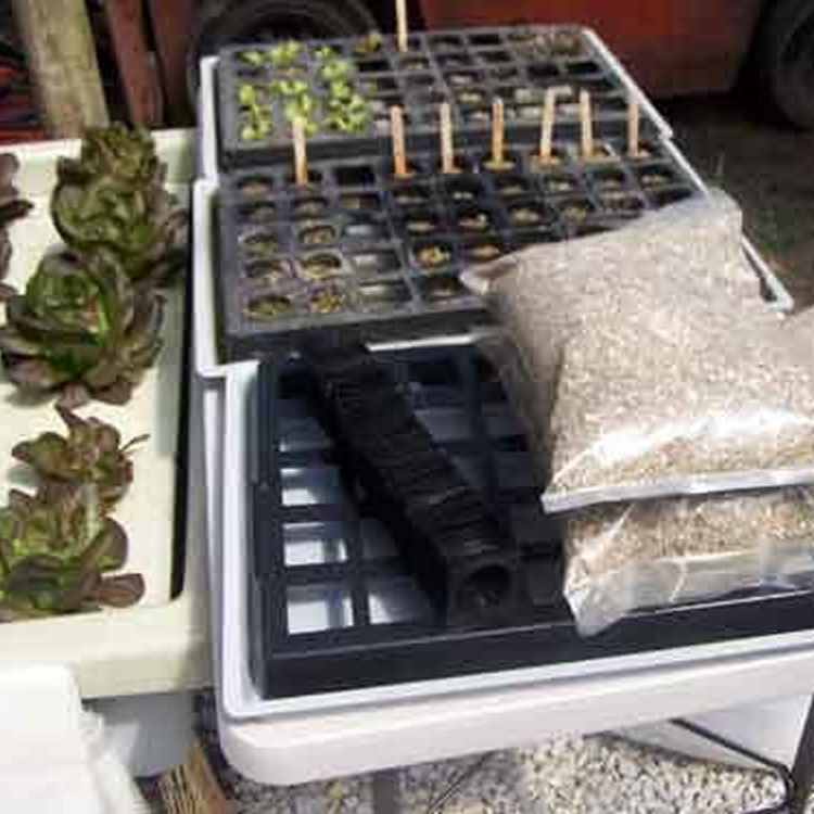 Seedling Raising Kit